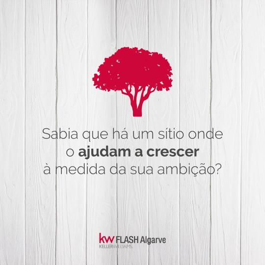 Aproveita a oportunidade a junta-te ao projecto - Recrutamento | KW Flash Algarve
